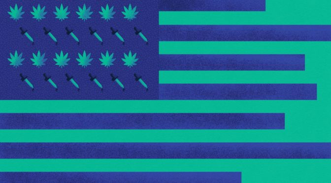 New data show Americans are turning to CBD as a cure-all for the modern condition