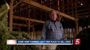 Hemp farmers can't find places to sell crop, not enough processors