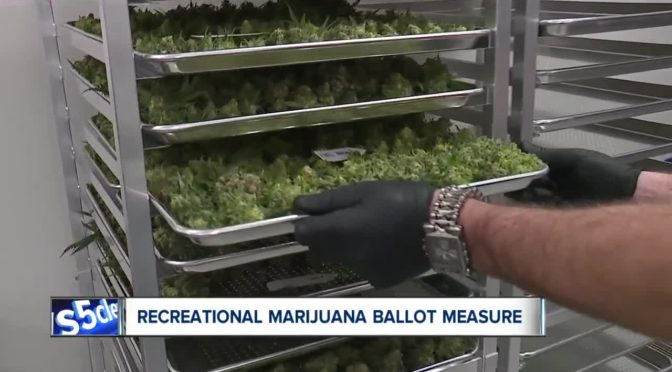 New group proposing recreational marijuana files paperwork for November 2020 ballot