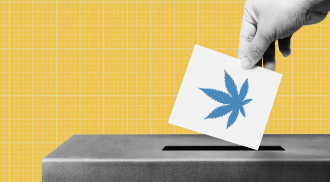 Pot Stocks Set for Biden Boost? (GRWG, CURLF, MCTC, TLRY)