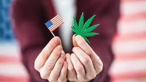 Washington announces cannabis giveaway in state-approved 'joint for jabs' vaccine campaign