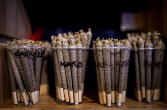 No More Cannabis Tourism In Barcelona? Court Overturns Regulations On 'Clubes Cannábicos'